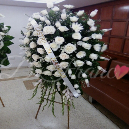 Fúnebre Cali